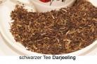 Darjeeling- first flush Schwarztee