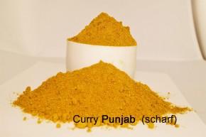Curry- Punjab, extra scharf
